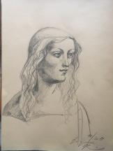 pencil drawing - Leonardo